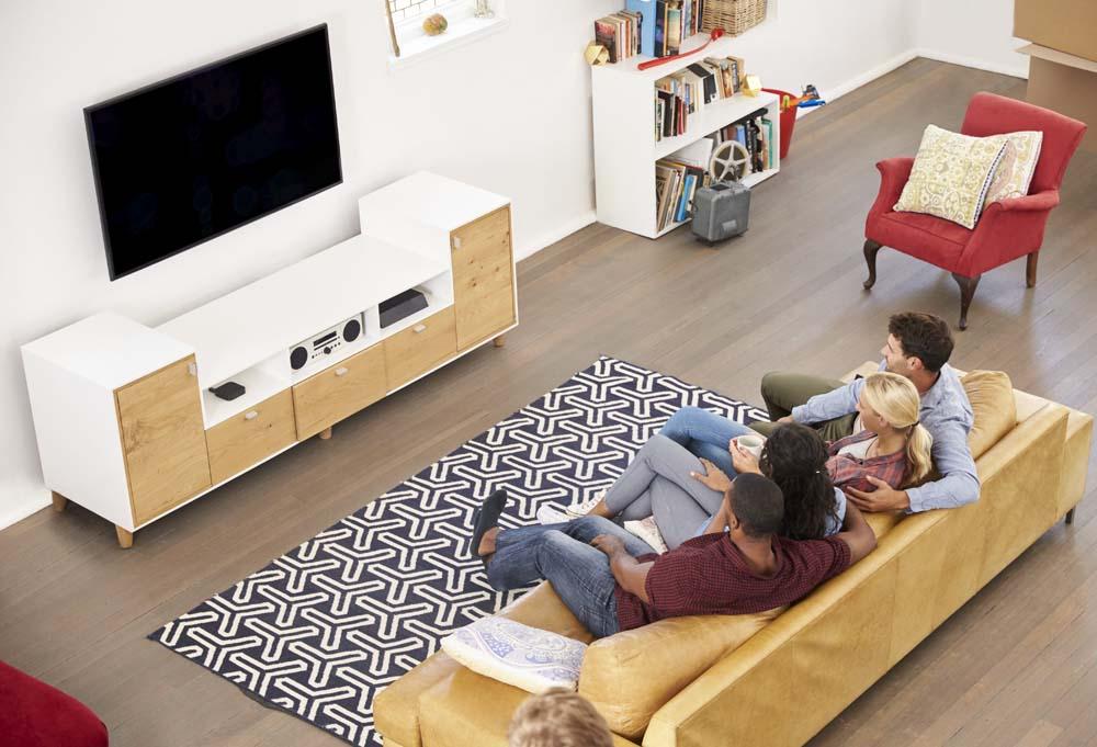 家庭看电视