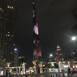 Абу Даби 41