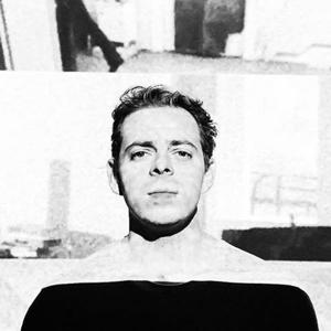 Luiz Zerbini 35