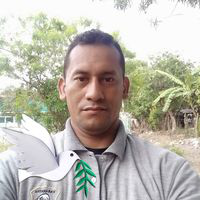 Wilfredo Perez 35