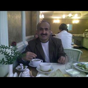 Mahmud Elmostafa 46