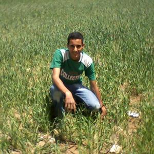 محمد ياسين 31