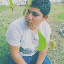 Gerardo PJ 18